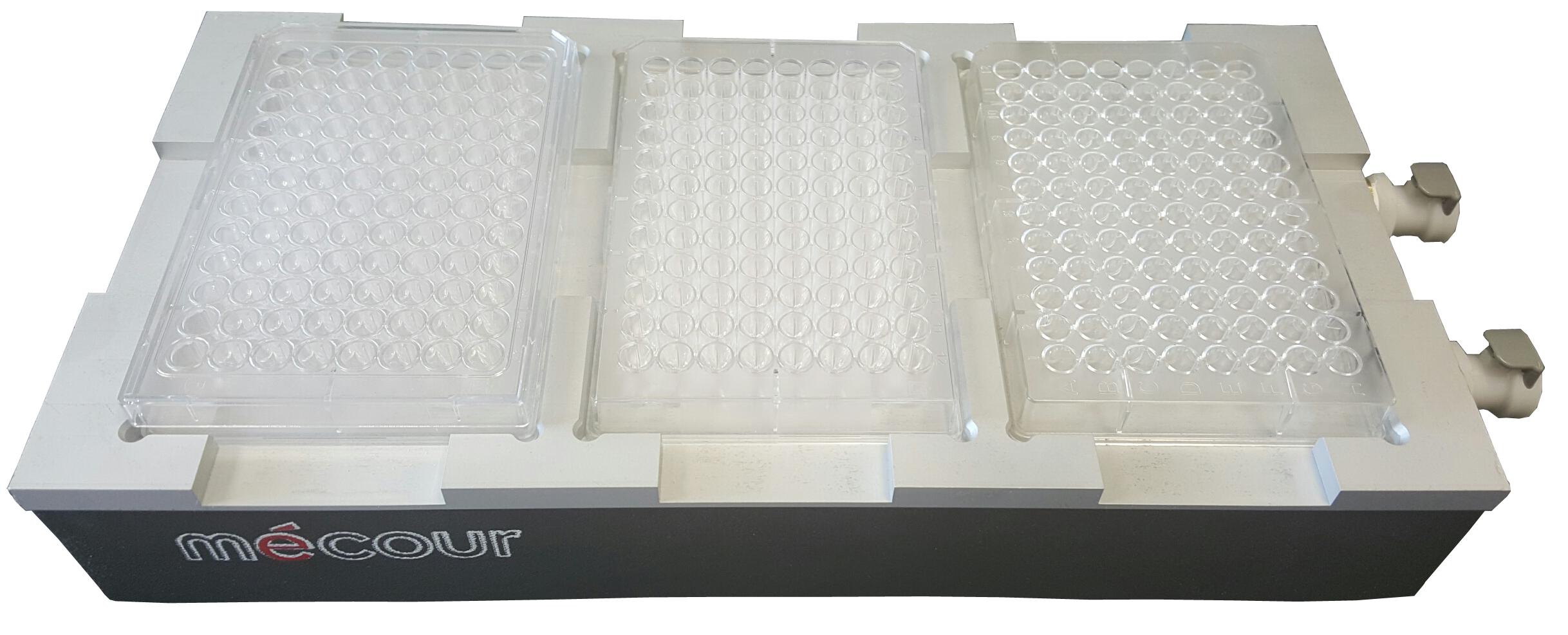 80-03-EVO-plates.png